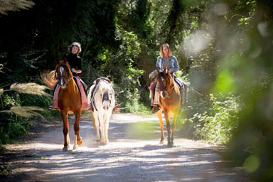 riding-andalusia-Spain